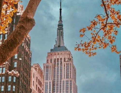 The #EmpireStateBuilding Observatory Re-Opened  8am-11pm Daily   : @newyorkcityk…